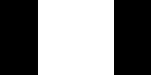 CERN-Logo-White