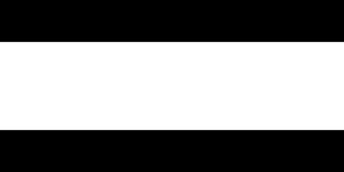 Invista-white-logo